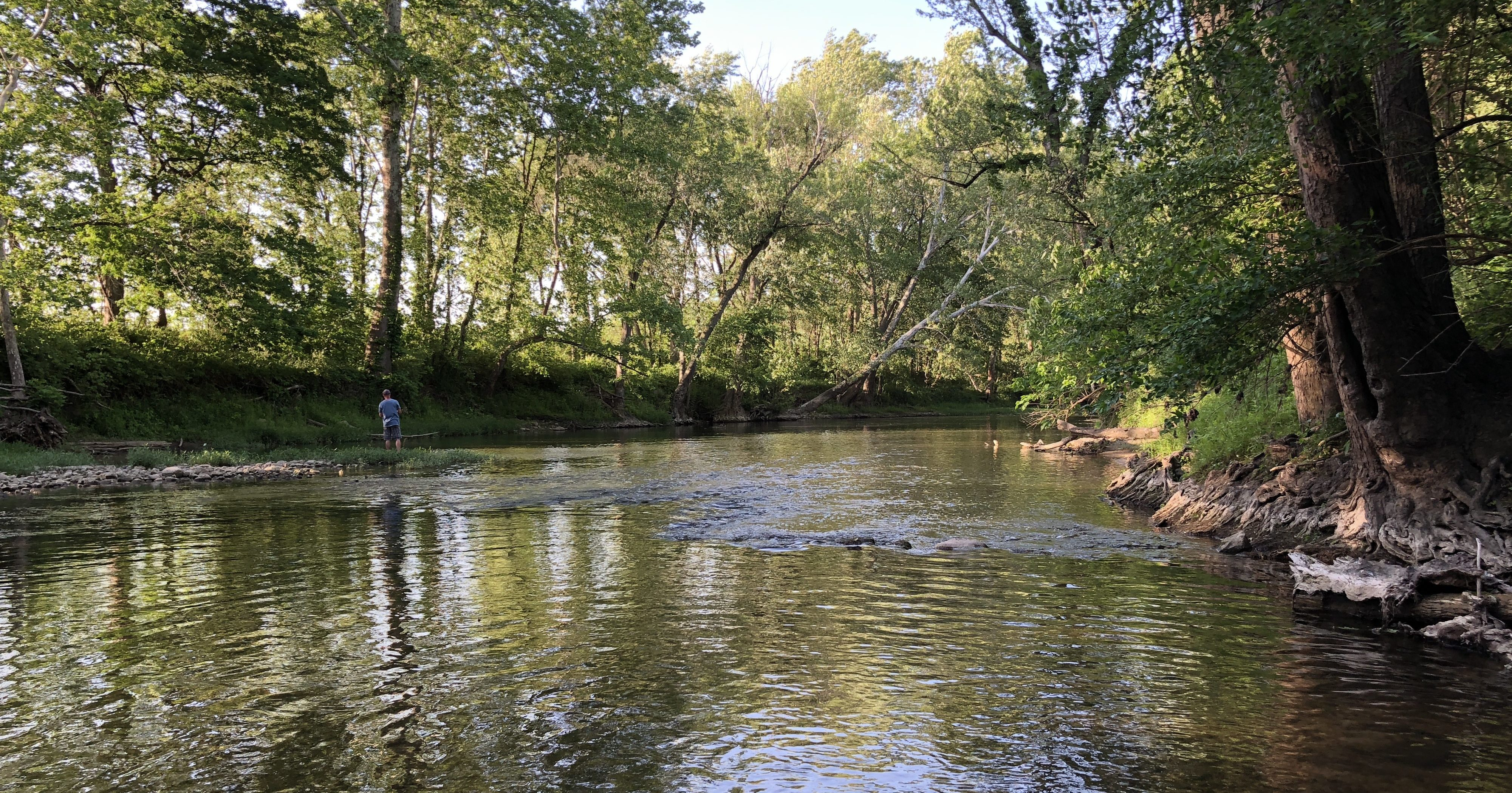 On the banks of the Wildcat Creek